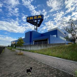 GO TO IKEA◇イケアに行ってきました♪