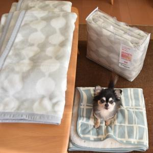 ユニクロ×フィンレイソン◇ヒートテック毛布とブランケット買いました♪ユニクロ年末祭で冬対策いろいろ