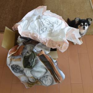 scope便×2◇9月3回目のお届け 再入荷の東屋箸箱とバード友の会と選べるOMK