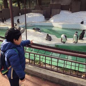 「レギュラーシートと全く同じ値段で旅行気分を2倍!楽しむ方法。鳥羽水族館へは伊勢志摩ライナーのサロンカーが最高!な理由。」