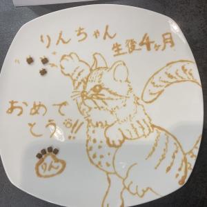 りんちゃんの生後4ヵ月のお祝い!