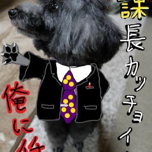 「犬ダジャレかるた総集編」  (か行)