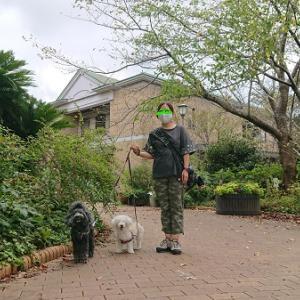 犬と一緒に出掛けよう!  「青葉の森公園」(後編)