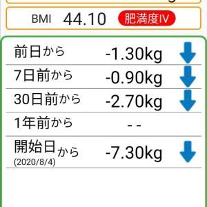 体重記録67日目