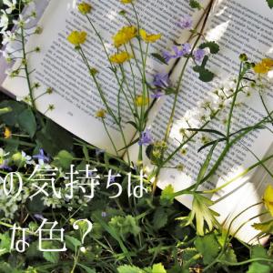 春の気持ちはどんな色? ~春に読みたい絵本・児童書3選~