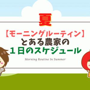 【モーニングルーティン】とある農家の一日のスケジュール【夏】