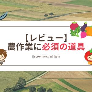 【収穫バサミレビュー】農業研修に向けて何が必要?【農作業道具編】
