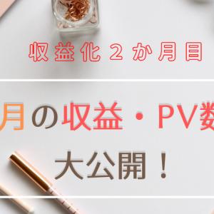 【収益化2か月目】11月の収益・PV数を大公開!