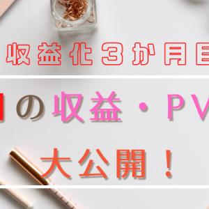 【収益化3か月目】12月の収益・PVを大公開!