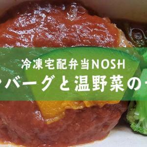 冷凍宅配弁当レビュー【ハンバーグと温野菜のデミ】
