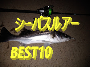 涸沼、涸沼川、那珂川、久慈川おすすめシーバスルアーBEST10!