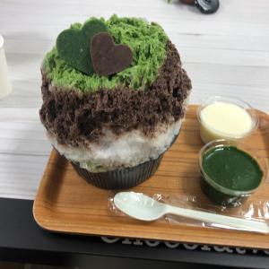 かき氷 茶ポロ 新宿小田急百貨店 催事 埜庵