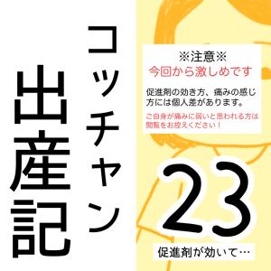 コッチャン出産記【23】