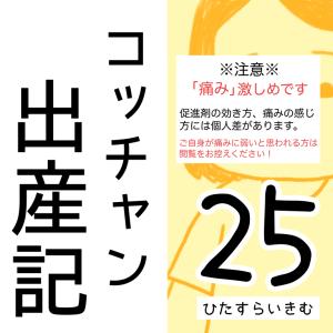コッチャン出産記【25】