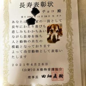 (公財)日本動物愛護協会から!