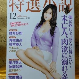 特選小説12月号「淫魔女クイーン」第2話:熱き性戯の味方(睦月影郎)を読んでみました。