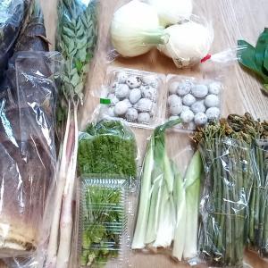 山菜の食べ方