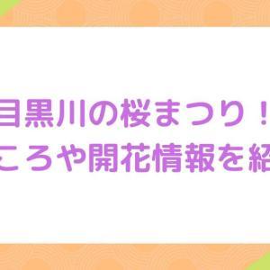 【目黒川】桜祭り2021!見どころや開花情報を紹介!屋台やお花見クルーズも!