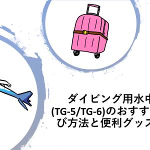 ダイビング用水中カメラ(TG-5/TG-6)のおすすめの持ち運び方法と便利グッズの紹介!
