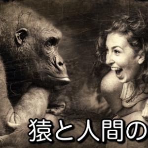 猿と人間の思考の違いから「成功脳」を構築する方法!