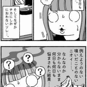 【9】謎のニオイの先
