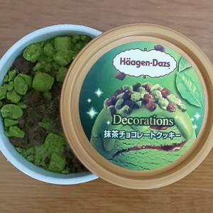 【その他】[ハーゲンダッツ]『抹茶チョコレートクッキー』