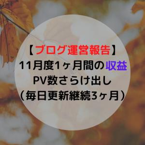 【ブログ運営報告】11月度1ヶ月間の収益,PV数さらけ出し(毎日更新継続3ヶ月)
