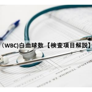 WBC(白血球数)【検査項目解説】