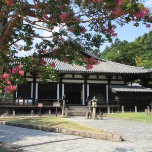サルスベリ揺れる法華堂 ―東大寺―