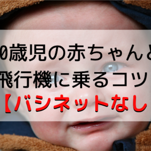 5ヶ月の赤ちゃんと飛行機に乗るコツ【バシネットなし】