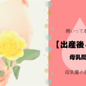 【出産後4日目】母乳開通!