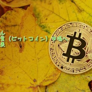 ペイパル 仮想通貨(ビットコイン)市場に参入