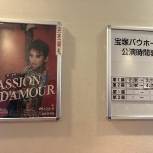 『パッション・ダムール -愛の夢-』感想・10