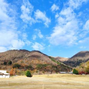 11/22 関西シクロクロス マキノ JCX UCI-2