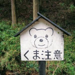 リフレッシュ!一人旅【旅ラン】足利市名草の「厳島神社」と「巨石群」は隠れパワースポットだった!