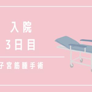 子宮筋腫の腹腔鏡手術【入院3日目】(新百合ヶ丘総合病院)
