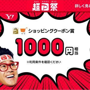 超PayPay祭くじで1,000円当たり、秒で使った(*ノωノ)
