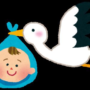 胚移植後の生活 ~ET11_ET12~