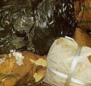 最高裁 遺骨の大量不法投棄で大石寺を断罪