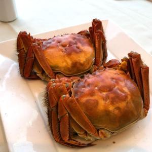 [香港]上海蟹を食べるレストランといったらウーコン!CWBと尖沙咀を比較してみた。