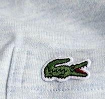 大人の男性におすすめしたいワンポイントTシャツ5選!カーハートWIP、ラコステ等・・・