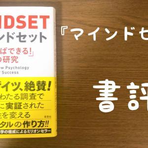 【書評】キャロル・S・ドゥエック『マインドセット 「やればできる!」の研究』