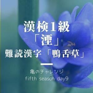漢検1級漢字「湮」と、難読漢字「鴨舌草」の読み方