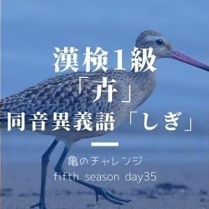 漢検1級漢字「卉」と、同音異義語「しぎ」
