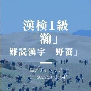 漢検1級漢字「瀚」と、難読漢字「野蚕」