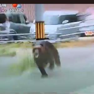 全裸男と熊出没でカオスな札幌、金曜日の朝。