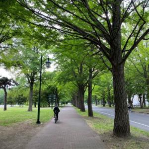 北海道大学内をお散歩したりサイクリングしたりの6月の土曜日