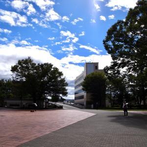 【沼津イベント】週末の沼津(2020年10月〜11月:沼津中央公園)〜新しい生活様式の中での新しいイベントの試み