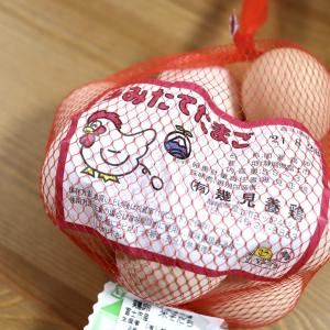 【うちごはん】カインズ沼津店で地場産のたまごを発見!富士市「幾見養鶏」さんのうみたてたまご