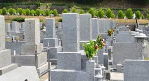 お墓はどうしたらいいの?